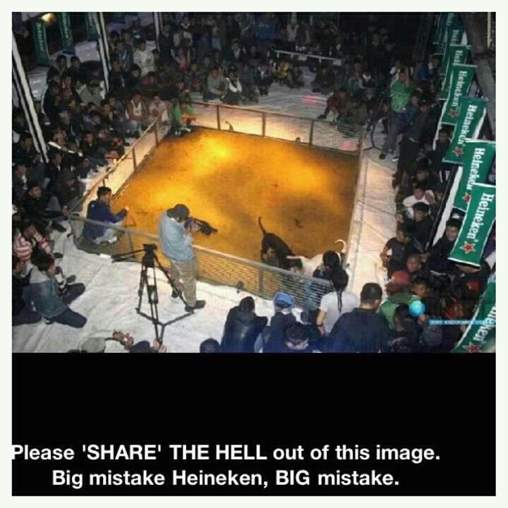 «Εὔγε» στὴν Heineken!!!