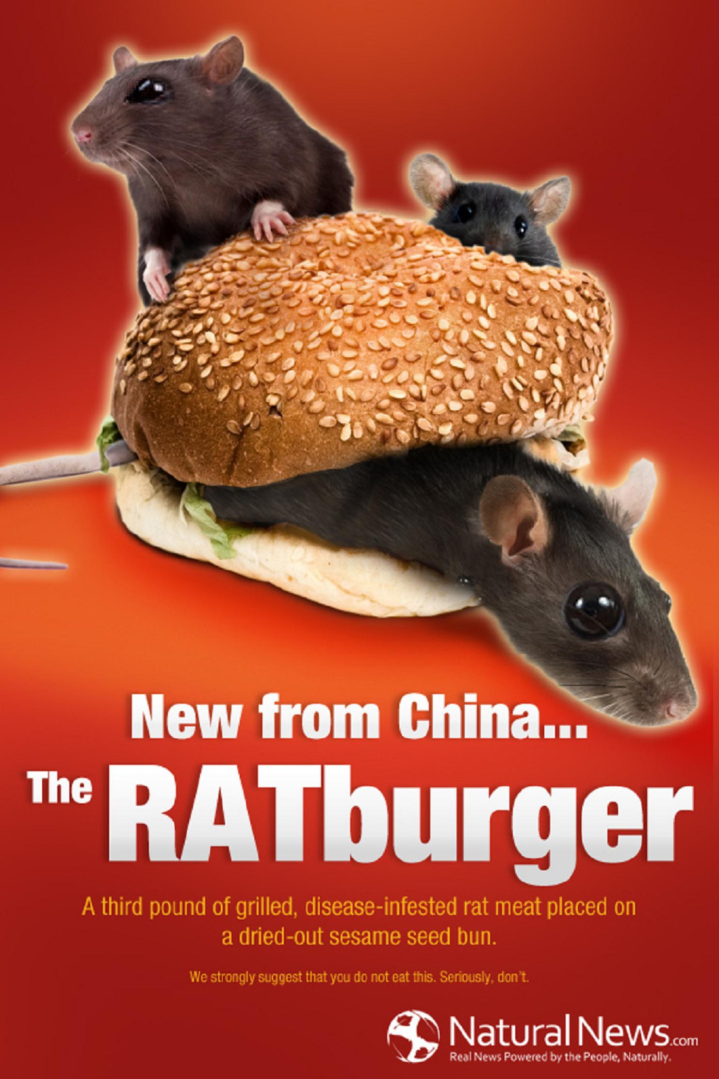 Ῥάτμπουργκερ. Σᾶς παρουσιάζουμε τὸ νέο ῥάτμπουργκερ (ποντικομπιφτέκι) ἀπὸ τὴν Κίνα!3