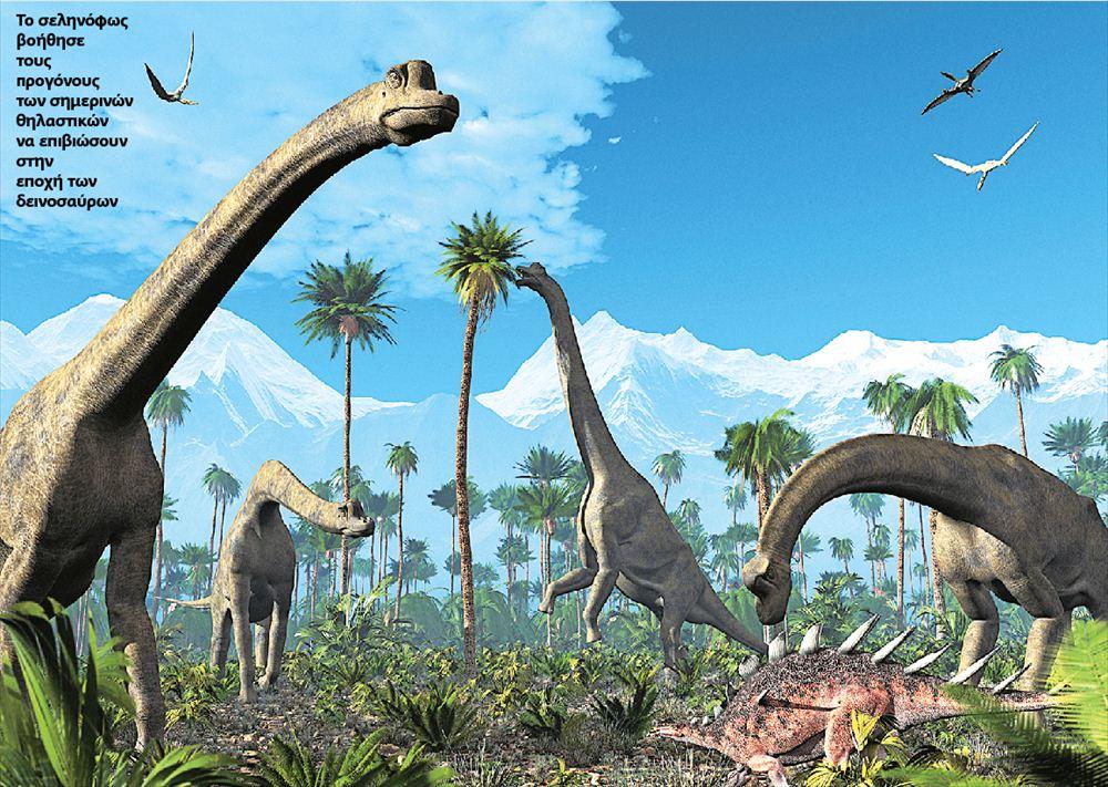 Το σεληνόφως βοήθησε τους προγόνους των σημερινών θηλαστικών να επιβιώσουν στην εποχή των δεινοσαύρων