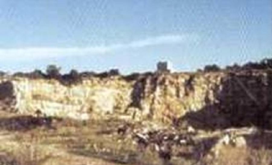 Άποψη του λατομείου όπου βρέθηκε η κνήμη του ανθρωπίδα της Τρίλλιας