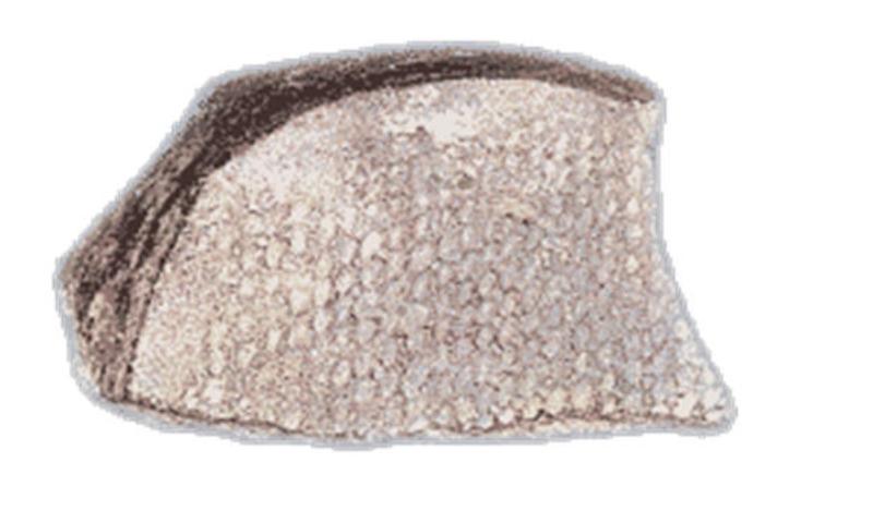 Βάση αγγείου με αποτύπωμα υφάσματος. Aρχαιότερη Nεολιθική εποχή (περ. 6500-5800 π.X.).