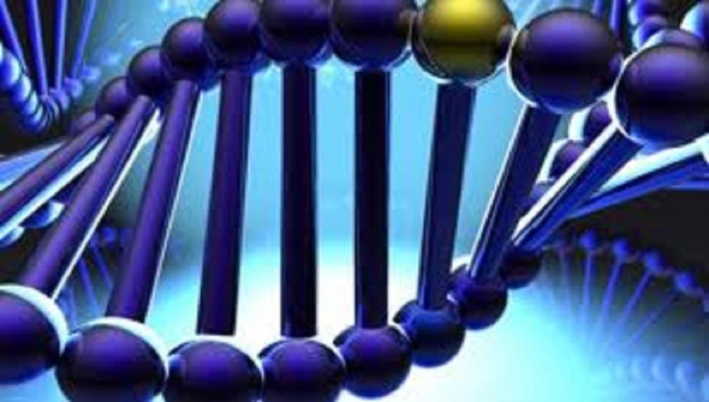 Ἡ πλήρης ἀποκωδικοποίησις τοῦ DNA μας εἶναι κάτι καλό;2