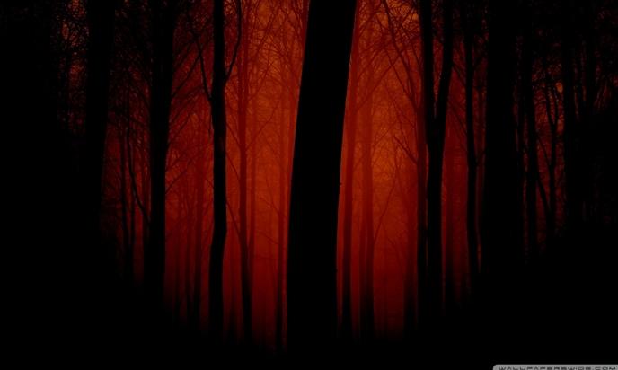 Αὐτὰ τὰ δένδρα εἶχαν ῥίζες ἀπὸ χρυσό...