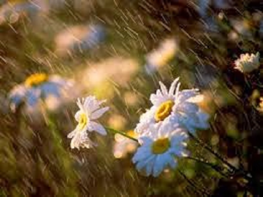 Βροχὴ