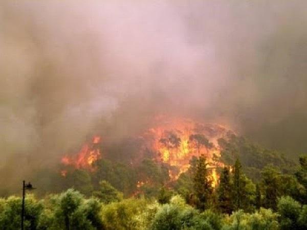Ἀνεμογεννήτριες καί πυρκαϊές, εἶναι ἄσχετες μέταξύ τους;1