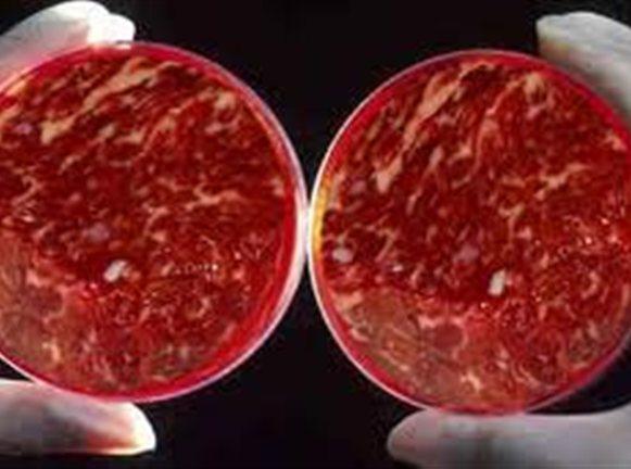 Τὸ συνθετικὸ κρέας ἔρχεται στὸ τραπέζι μας!
