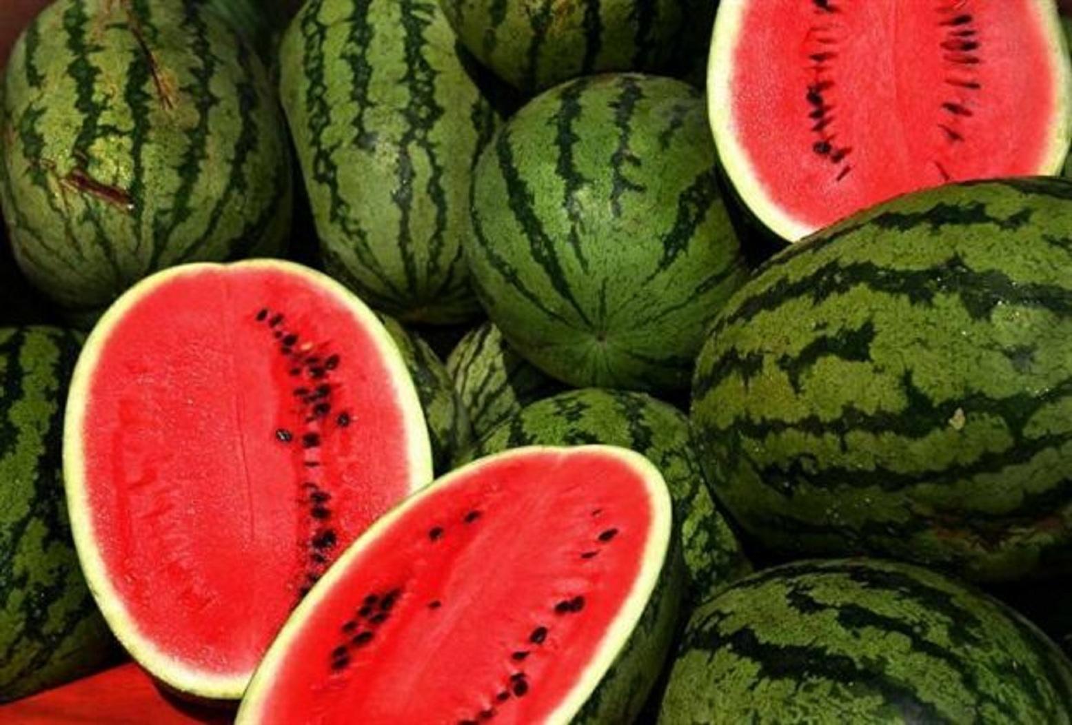 Πιο ζουμερά, πιο γλυκά και πιο θρεπτικά καρπούζια υπόσχονται οι επιστήμονες