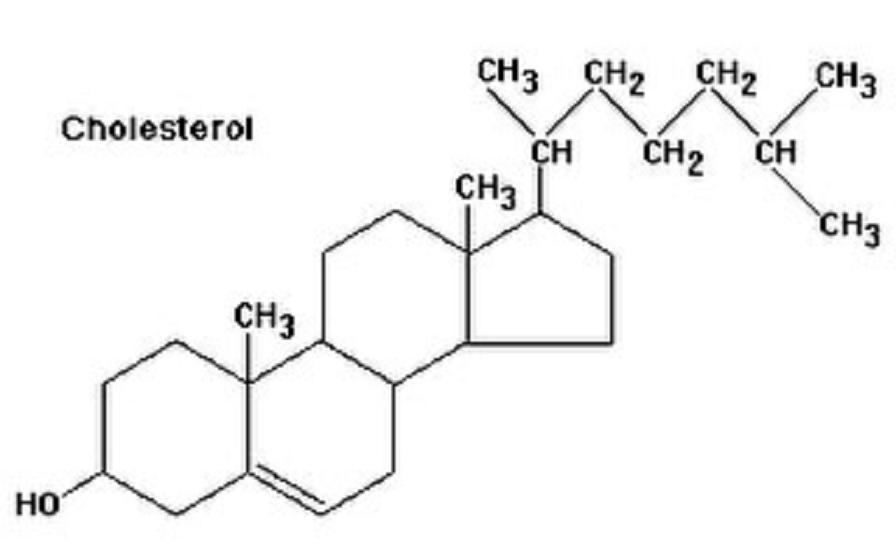 Ὁ μύθος τῆς χοληστερίνης. (α') 4