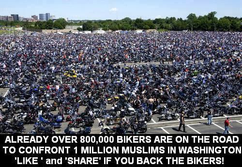 800.000 hogs;5