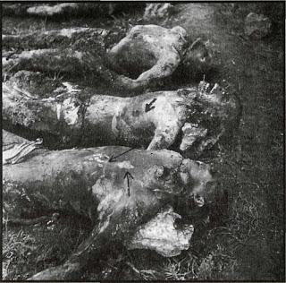 Ὅταν μᾶς δολοφονοῦσαν κατὰ χιλιάδες.21
