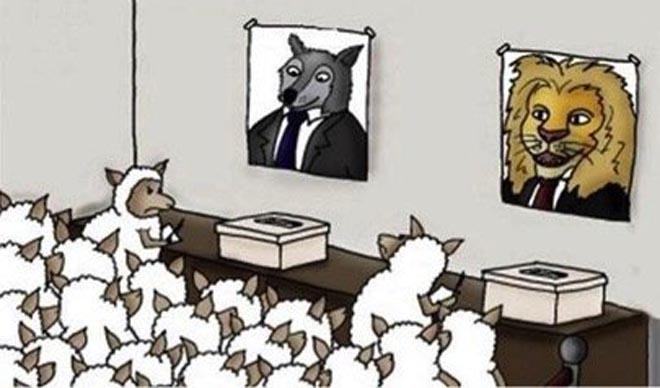 Δημοψηφίσματα;