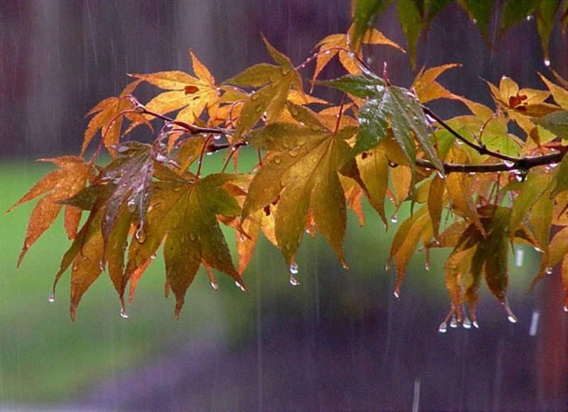 Καλὸ Φθινόπωρο λοιπόν!!!
