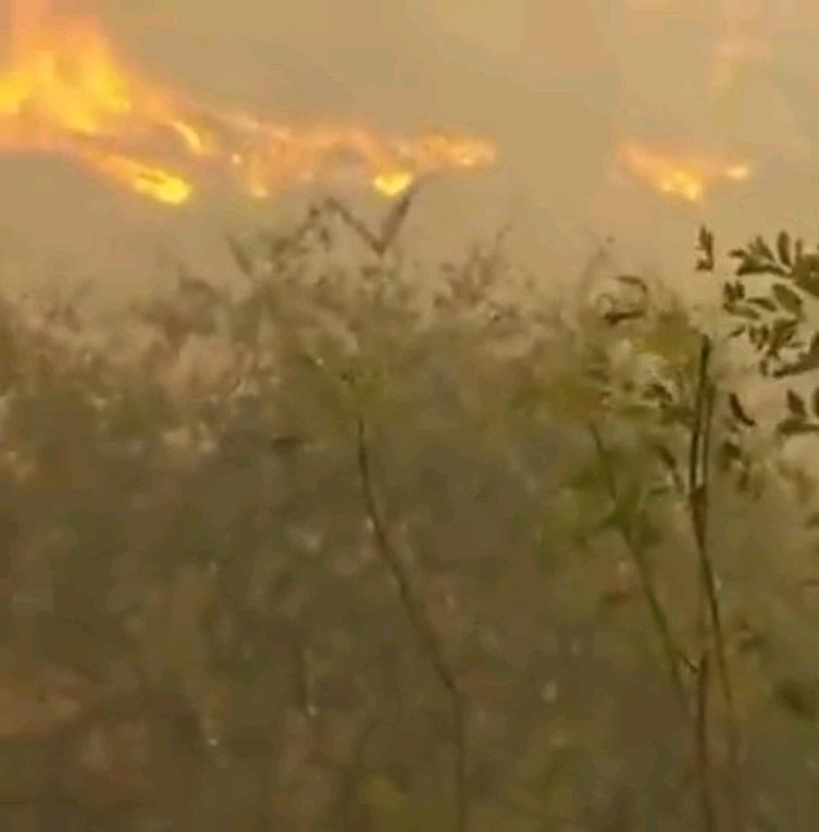 Φλόγες στὴν Χάιφα σημαίνουν ...τρομοκρατικὲς ἐπιθέσεις!!!