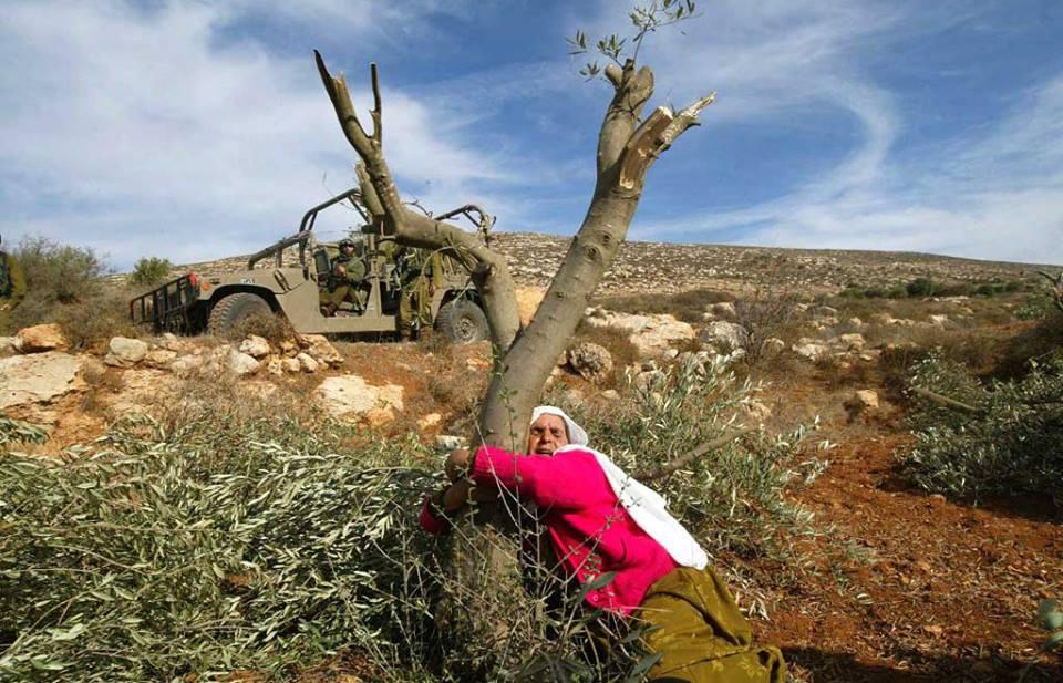 Φωτιὲς στὴν Παλαιστίνη ποὺ ...δὲν ὑπάρχουν!!!3