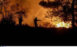 Θά γίνη ἐπί τέλους κάποια σοβαρή συζήτησις γιά τίς πυρκαϊές;