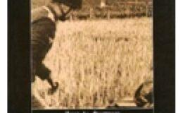 Ἡ «παράδοσις» τῆς Κρήτης στὸν Χίτλερ ἀπὸ τὸν Τσῶρτσιλ